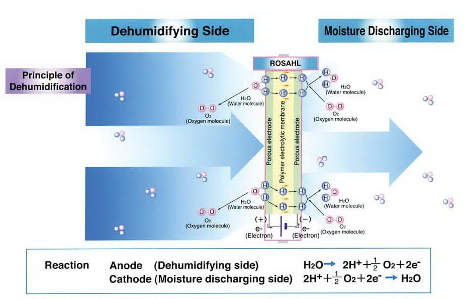 SGM Blog | Why you need dehumidification